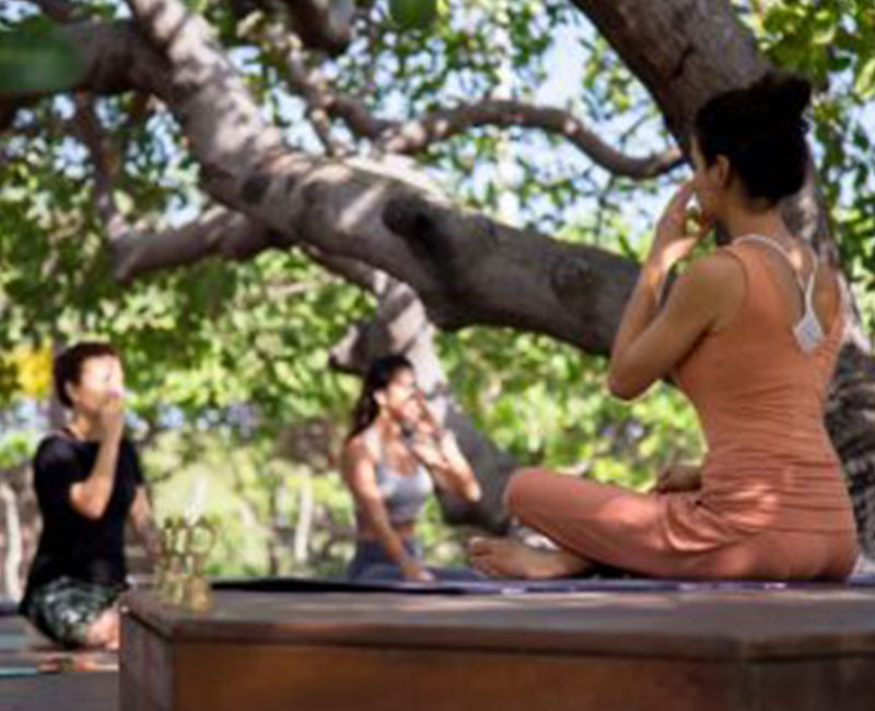 A group doing breathing exercises in a yoga treat