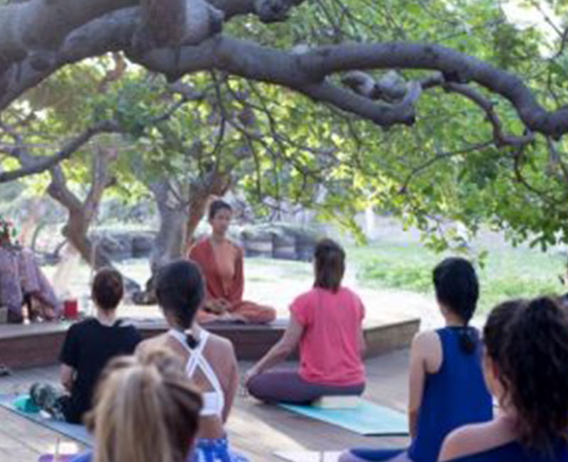 A group of people meditating in a yoga retreat