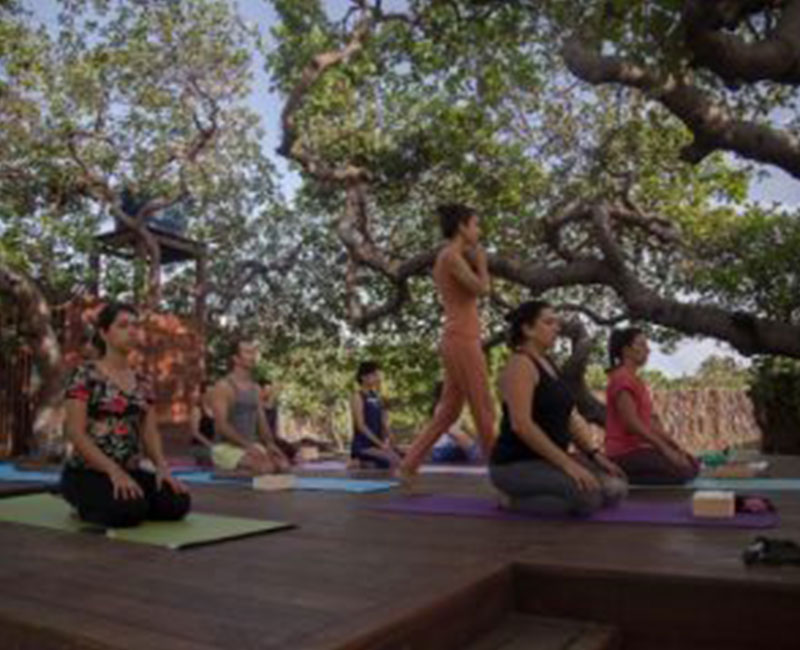 A yoga retreat being conducted for a group of people