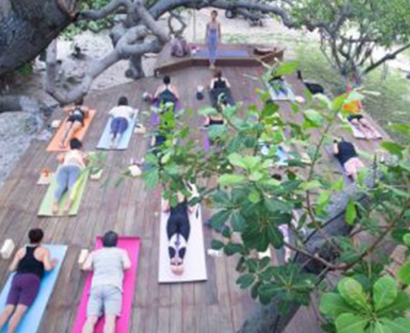 A group of people doing yoga in a yoga retreat