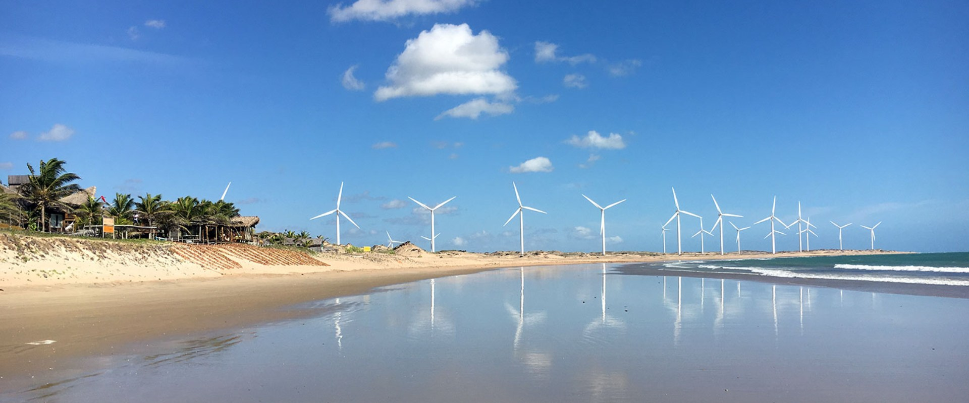 wind mills at the beach